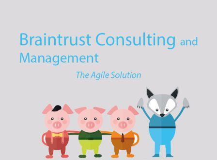 Braintrust Consulting